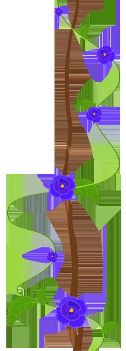 fleurs-funerailles-sp
